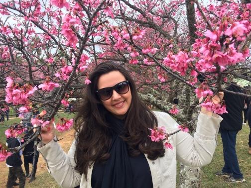 Sakura Matsuri – Festival das Cerejeiras Bunkyos  em São Roque / SP