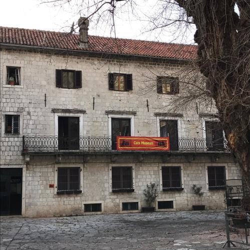 Cats Museum dentro das muralhas de Kotor