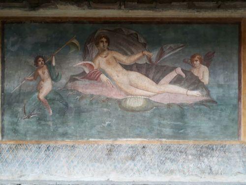 CASA DE VENUS NA CONCHA - Pompeia 2018