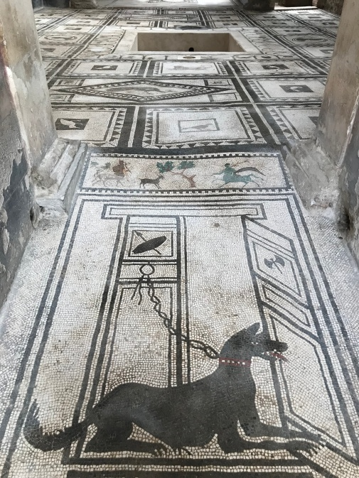 CASA DE PAQUIUS PROCULUS - Pompeia 2018