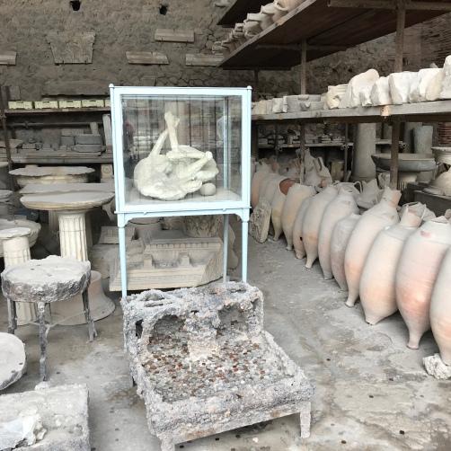 Cachorro encontrado em Pompeia